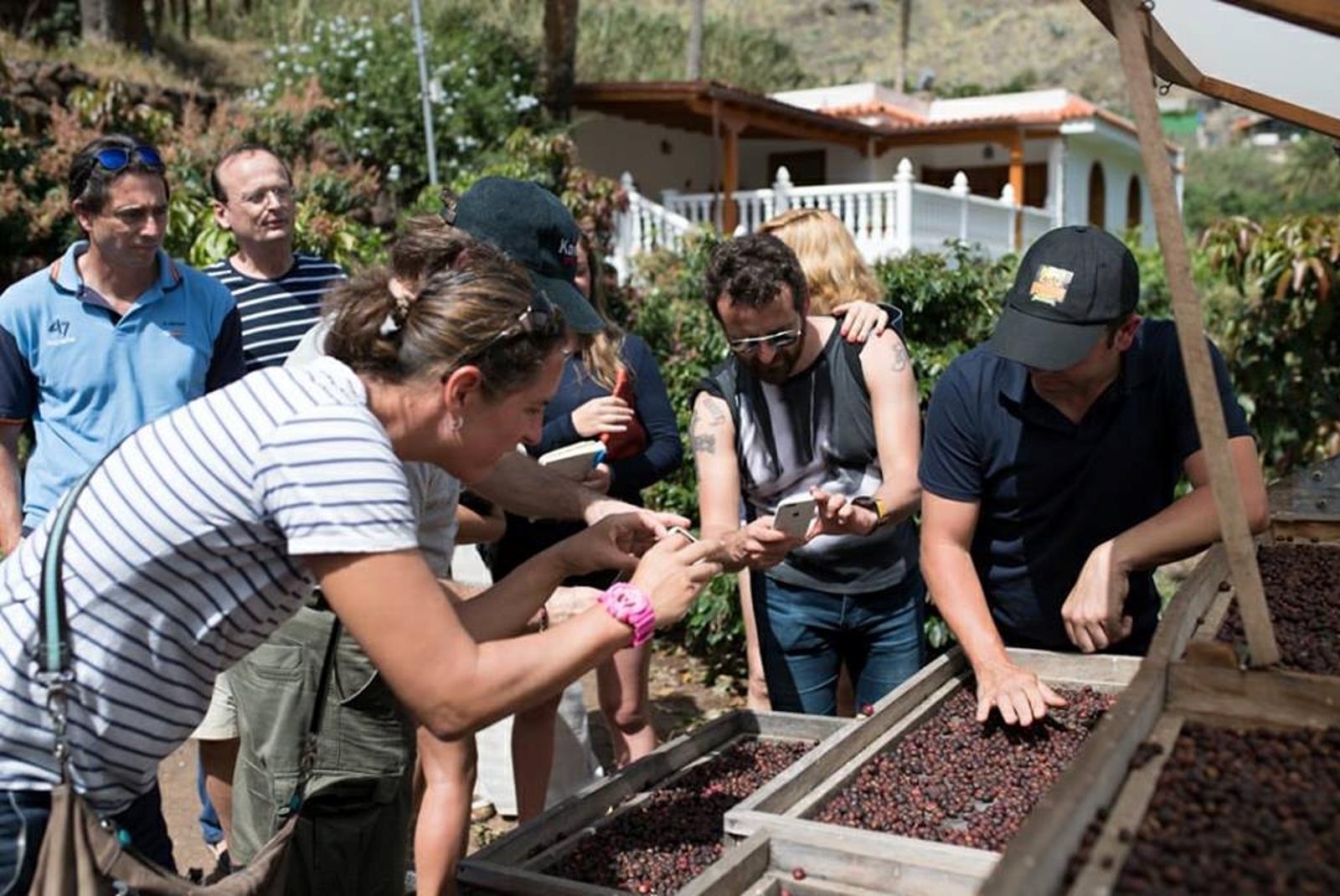 Coffee-Tour-in-Gran-Canaria-2