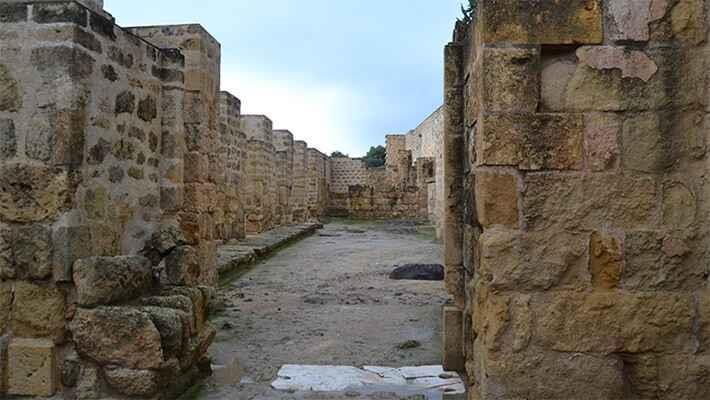 excursion-a-medina-azahara-4
