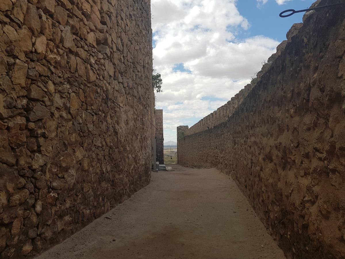 Offer:-Museum,-Castle,-Windmills-of-Consuegra-14
