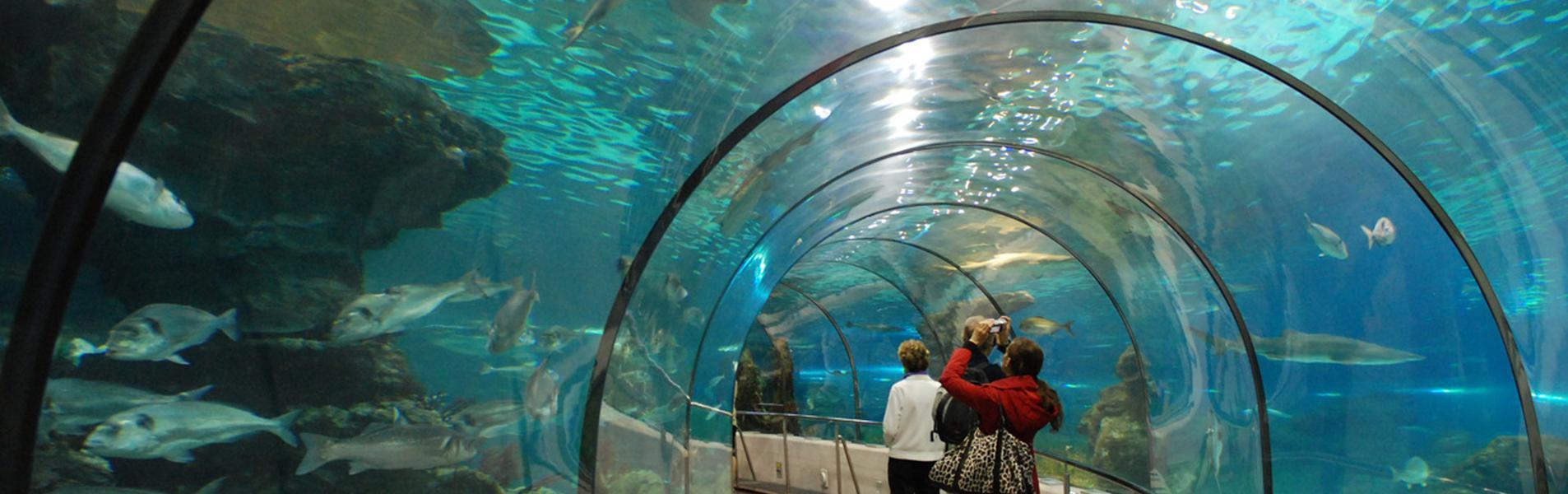 Entrada al Aquarium Lanzarote en Costa Teguise