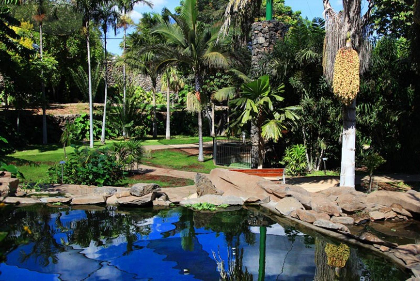 Visita-Jardin-Botanico-Palmetum-1