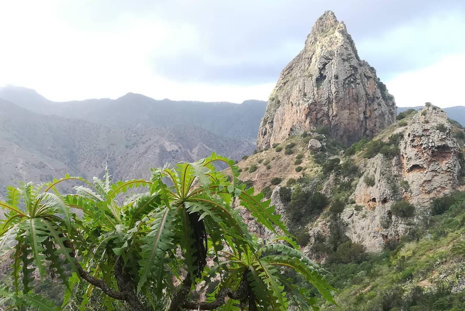 Senderismo-por-el-Parque-Natural-de-Garajonay-6