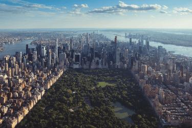 Central Park.png