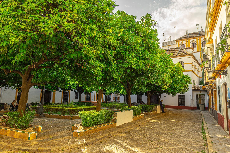 Free Tour La Judería de Sevilla: Santa Cruz