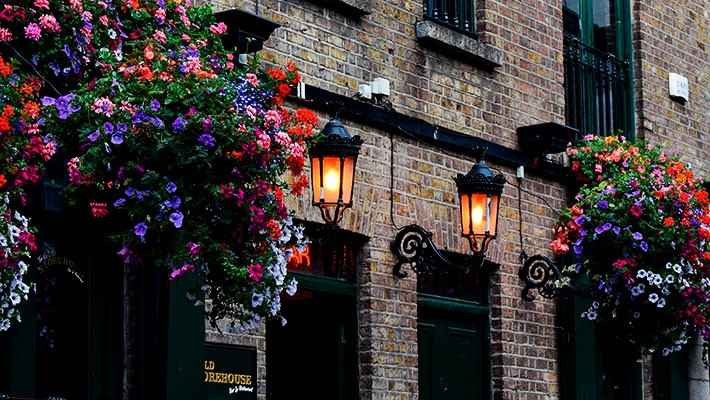 free-tour-dublin-imprescindible-8