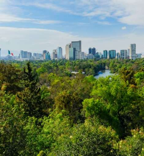 Chapultepec Free Walking Tour