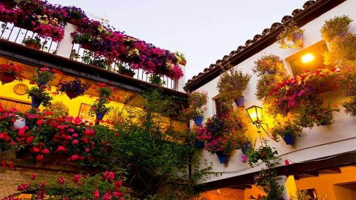 free-tour-patios-de-cordoba-7