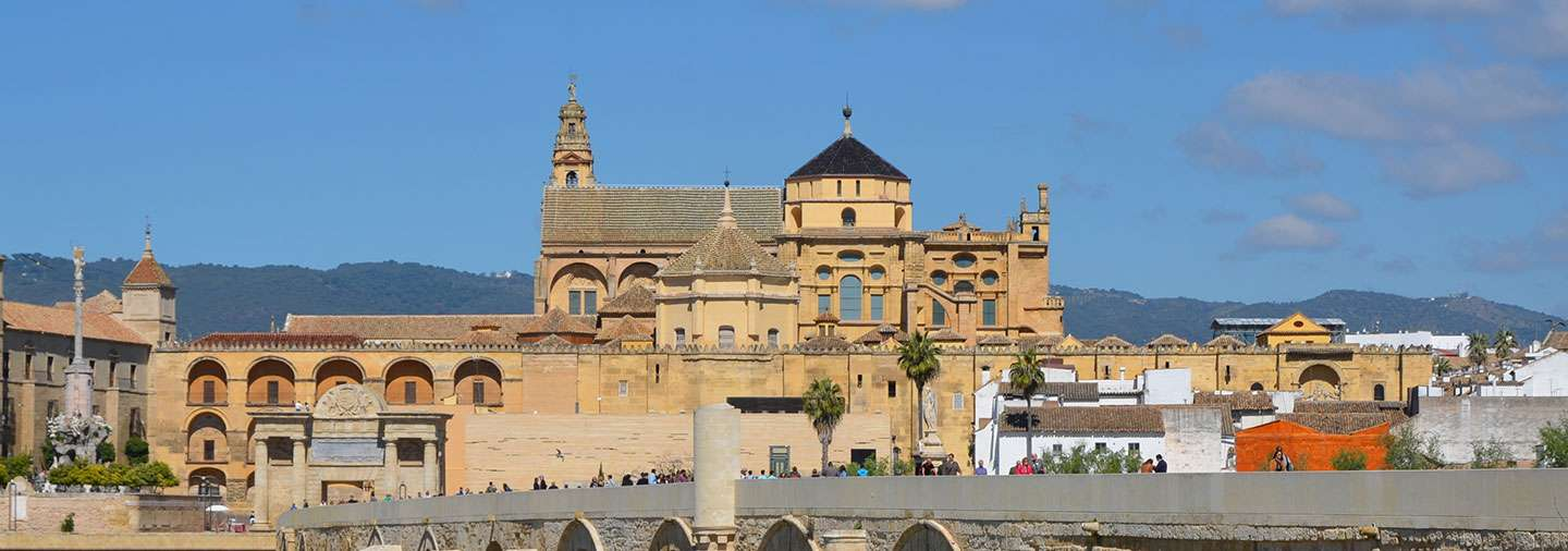 Best of Cordoba Tour with tickets