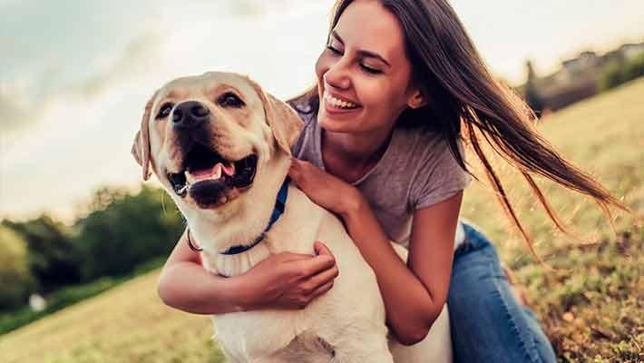 pet-charity-free-walking-tour-malaga-1