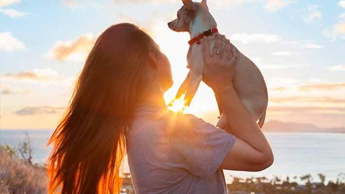 pet-charity-free-walking-tour-malaga-6