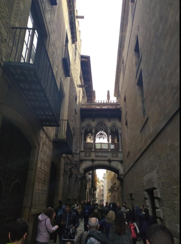 Free-Tour-Ciudad-Vieja:-Barrio-Gotico-y-La-Ribera-6