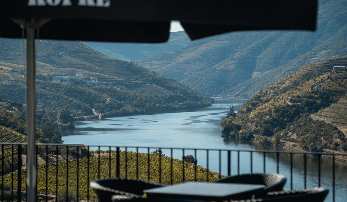 Tour de vino en el Duero con almuerzo y crucero